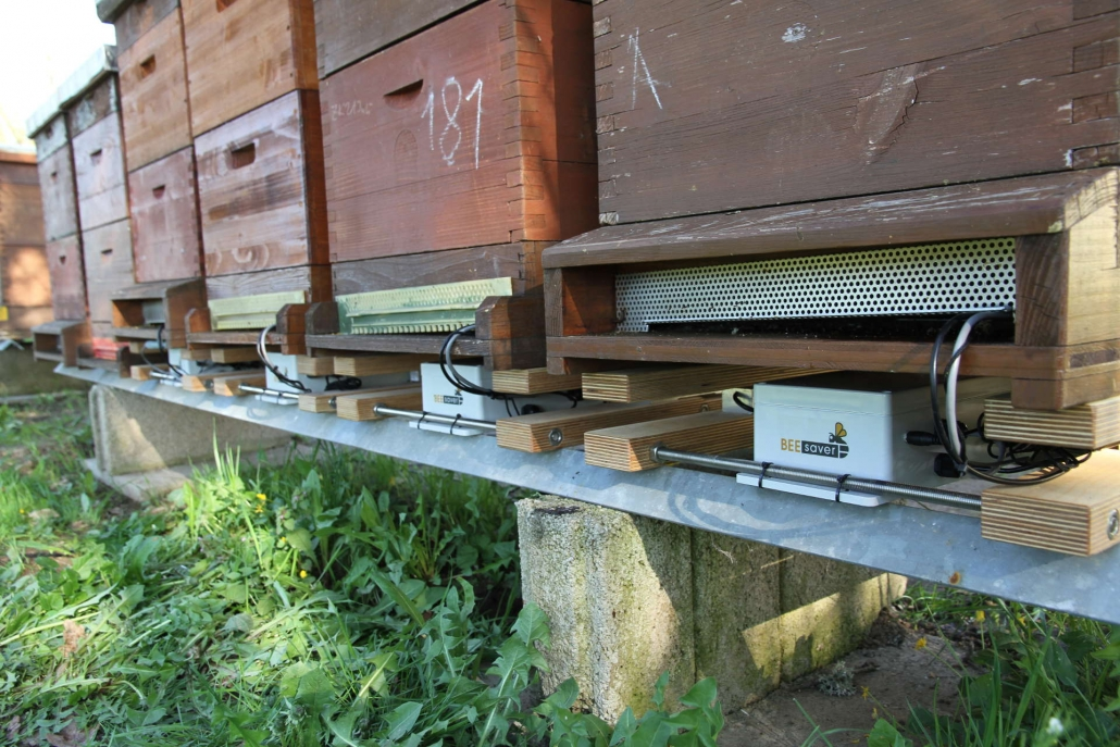 Die Bienenstöcke mit den BeeSaver Messsystemen