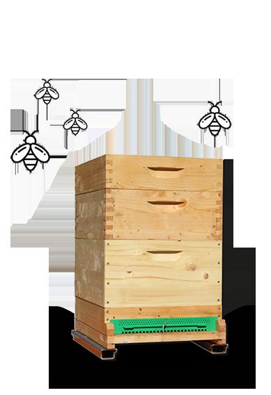 BeeSaver Bienenstockwaage