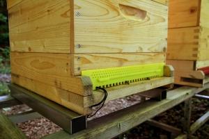 Der Bienenstock mit BeeSaver